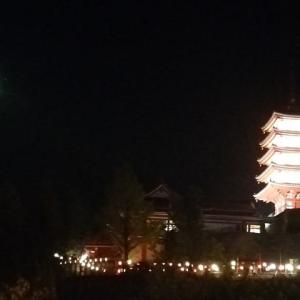 本福寺 五重塔ライトアップ