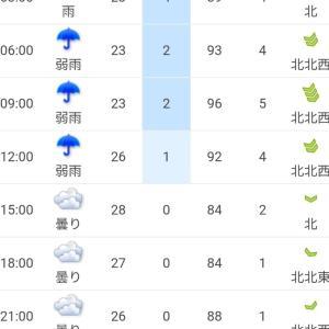 雨予報の旅行でも着物を着たい