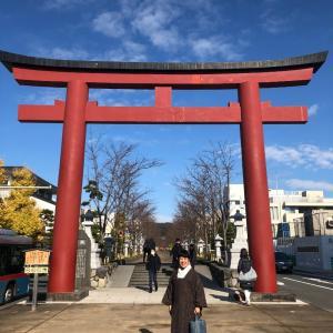 鎌倉の新名所☆一条恵観山荘①