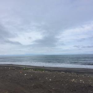 噴火湾ヒラメはまだ釣れる!クイックヘッド・シャッド炸裂!