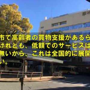 平塚市で高齢者の買物支援があるらしいですけれども、低額でのサービスはなかなか無いから、これは全国的に展開してほしい。