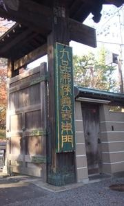 東急大井町線 九品仏浄真寺の紅葉は今が見頃