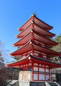 富士吉田市の新倉山浅間公園からの富士山