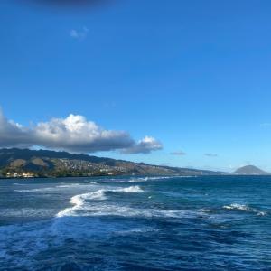 助け合い ハワイ語でOHANAの意味は家族