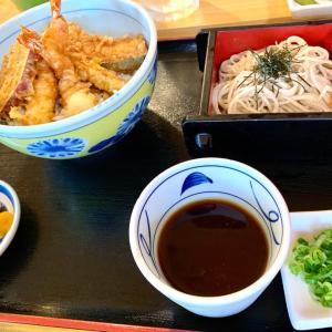 日本のお蕎麦 稲葉