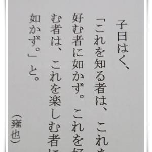 【募集】コープカルチャー西宮 新規こぎん刺し教室