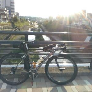 瀬戸川の朝