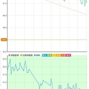 11月13日 体重51.1キロ。