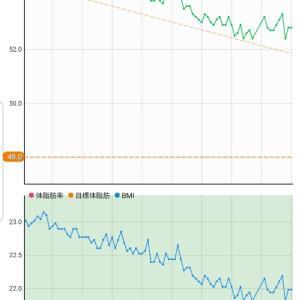 8月22日 体重52.8キロ。