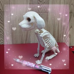 骨でも可愛い(^^)~羊毛フェルト教室資料