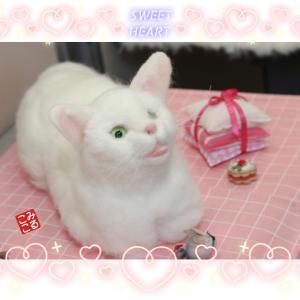 生徒様作品 白猫ちゃん~羊毛フェルト教室作品展⑨