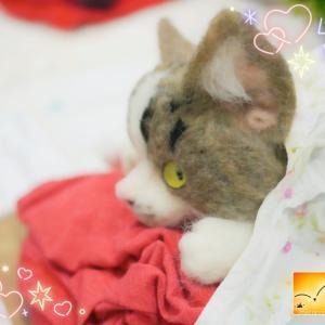 引き続き 羊毛猫です~羊毛フェルト作品展⑪