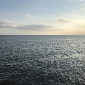 2019/09 湾奥ショア。