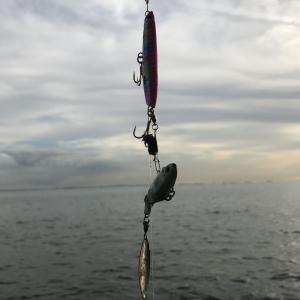 2019/10 湾奥シーバス(カヤック)。