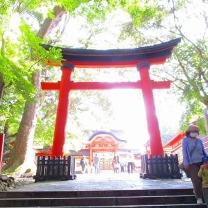 大元神社✲宇佐神宮