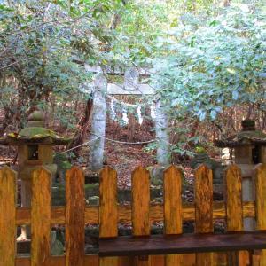 【情報提供のお願い】11月1日御許山(宇佐神宮 奥宮 大元神社のある場所)へ行かれた方