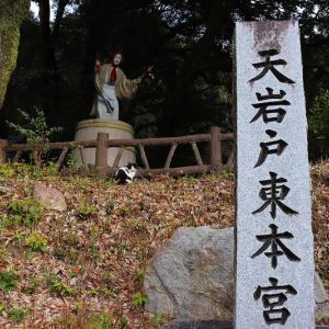 神社と猫さん(*ΦωΦ*)