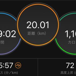 11/17 LSD 20km、11/11〜11/17の記録