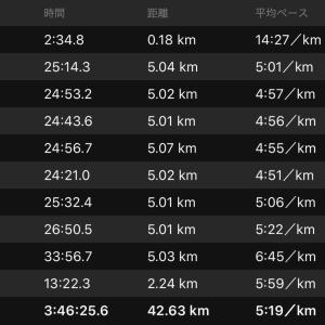 さいたま国際マラソン走ってきました