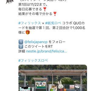 計1,000名様に♡QUOカード500円分がその場で当たる!