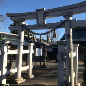 初詣〜八坂神社、金山神社〜
