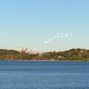 おひとりさま富士山を眺める@夕散歩