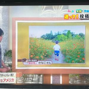 中京テレビで採用されて浮かれてました