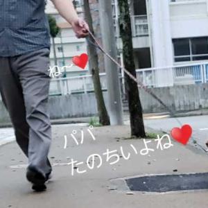 ♥️お散歩ばににん♥️