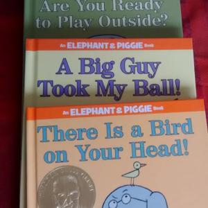 子供のお気に入りの英語の絵本♫