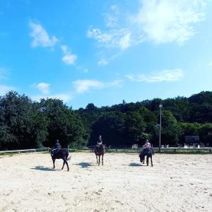 大人の1ヶ月夏休み続く..乗馬の集中レッスンの毎日!!