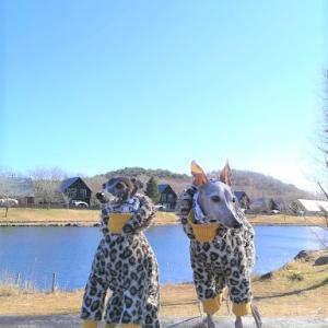 秋旅行~福島へ⑩~ 2020/11/22~24