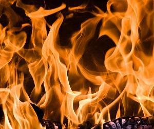 速攻、設置&撤収、後始末も簡単 ! 「コールマン(Coleman) 焚火台 ファイアーディスク」
