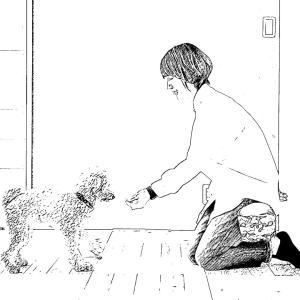 10ヶ月元野犬ちゃんカウセリング
