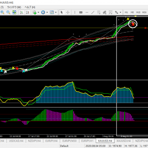 ベリーチャート  ゴールド/USD 4時間足  大きな流れが転換に移行!