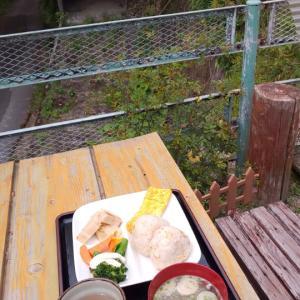 今日の、お庭ランチ(///∇///)