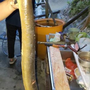 鰻だ~(~▽~@)♪♪♪