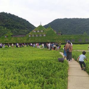 琵琶湖周辺にて