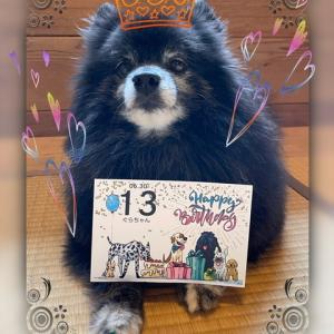 祝 13歳の誕生日✨