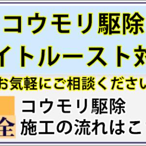 【動画あり】茨城県水戸市にてハクビシン駆除・封鎖施工を行いました。