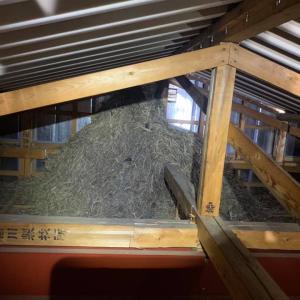 水戸市にてムクドリ駆除 天井裏には大きな巣の山が…  軽トラ1台分程度のゴミの量になりました
