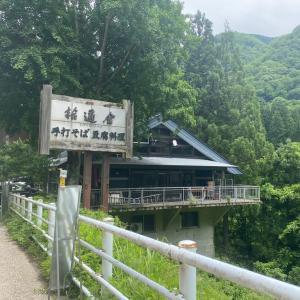 拾遍舎の蕎麦と太閤山ランド紫陽花