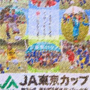 息子君JA東京都中央大会公式パンフの表紙を・・・~東京ジュニアサッカーチームランキング~