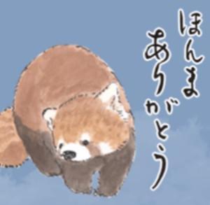 Happy birthday 次男