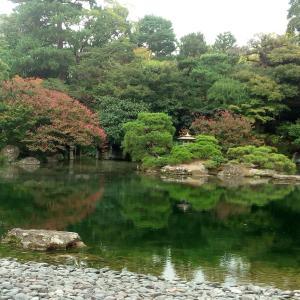 母と秋の遠足 →今出川駅→京都御苑