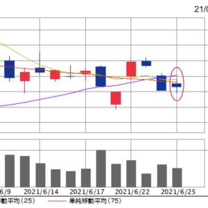 終値16,085円。オリエンタルランド株、上昇を止めているのは私たちの期待?