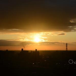 日の出直後の・・・