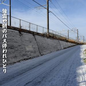 十二月の俳句~強霜や朝のバス停われひとり