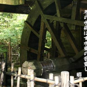 十二月の俳句~冬の水飛ばす水車の音重し