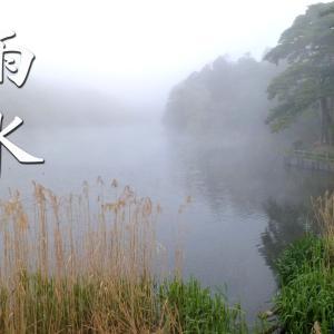 二十四節気「雨水(うすい)」~草木の芽が出始める頃