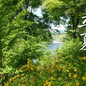 二十四節気「立夏(りっか)」~ 暦の上で夏が始まる頃